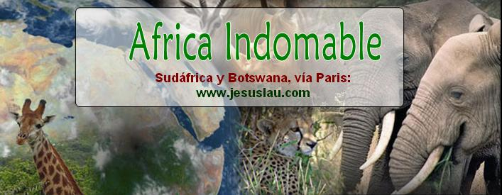africa_indomable_1